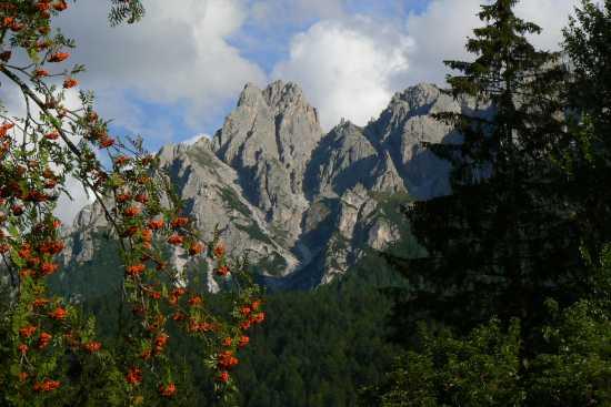 I Baranci - Dobbiaco (2889 clic)