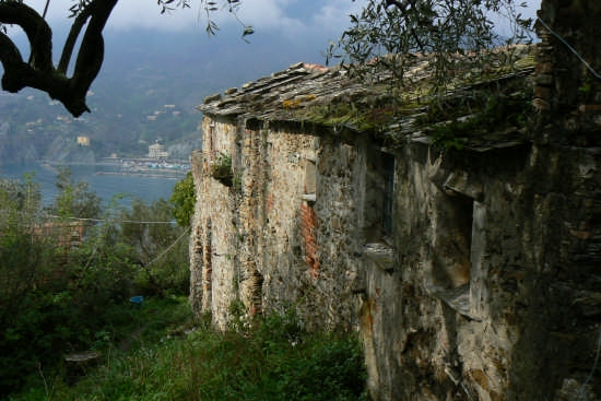 Levanto (scorcio) | LEVANTO | Fotografia di Alberto Badolati