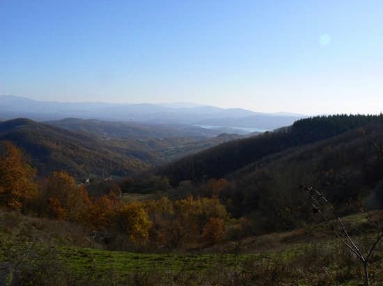Bilancino dal sentiero 20 - Vernio (2793 clic)