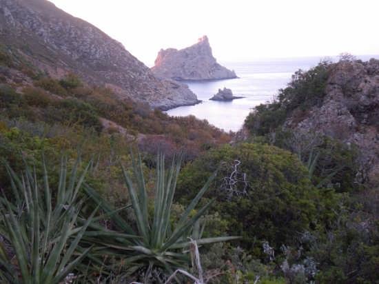 Sfondo sul castello di Punta Troia a Marettimo (5223 clic)