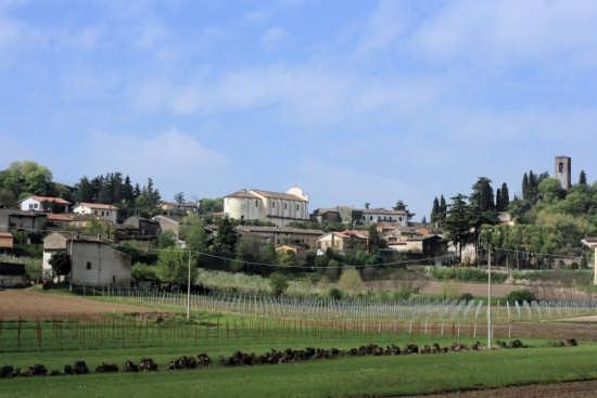 Cavriana, panorama (2339 clic)