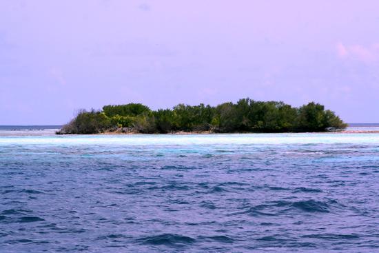 maldive mini atollo (462 clic)