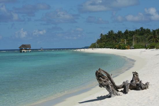a due passi dal paradiso(maldive) (415 clic)