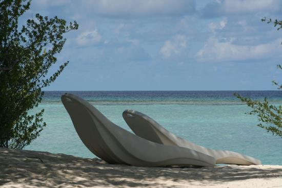 a due passi dal paradiso(maldive) (533 clic)
