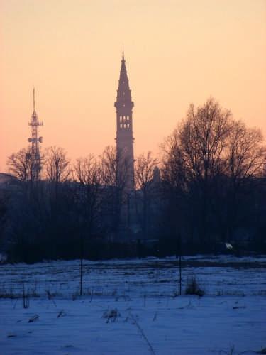 Campanile del Duomo di Alessandria (3423 clic)