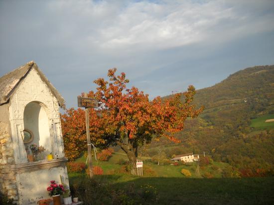Capitello dei Gugoli  - Tregnago (2889 clic)