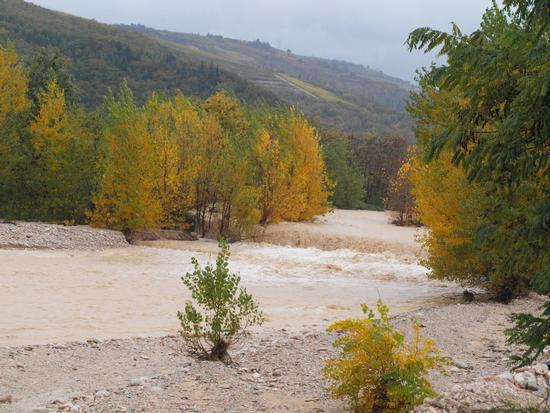 Il progno della Val D'Illasi - Tregnago (3123 clic)