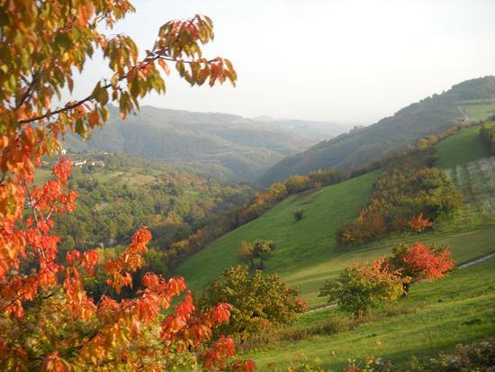 Val Tramigna - Tregnago (2557 clic)
