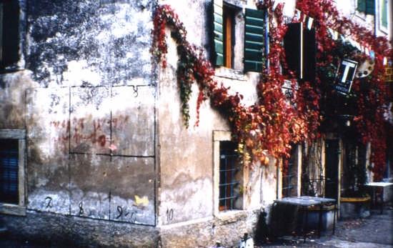 Osteria di Montecchio - Verona (2802 clic)
