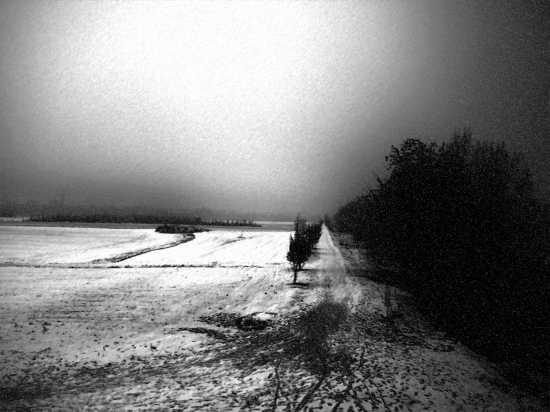 San Pancrazio - Campagna sotto la neve - Verona (3168 clic)