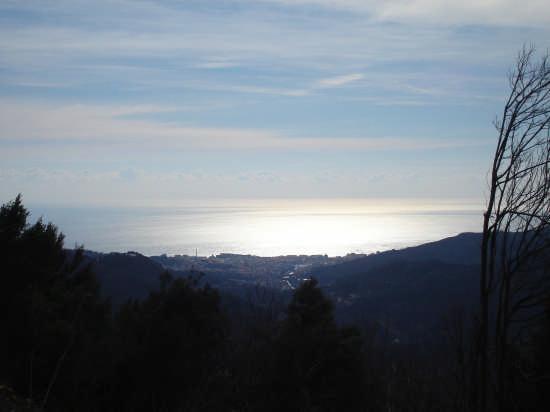 Savona vista dall'alto (3205 clic)