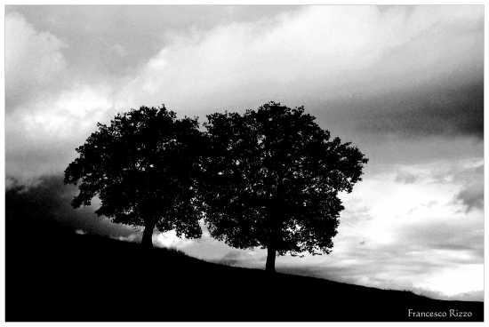 Rudere campestre - Agropoli (2430 clic)