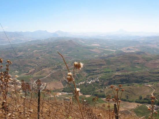 Panorama  - Alcamo (2907 clic)