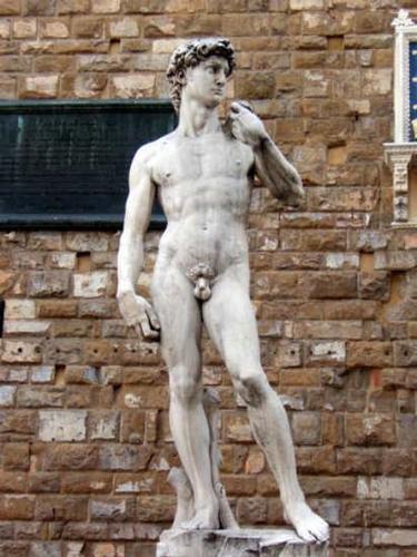 David - Firenze (26529 clic)