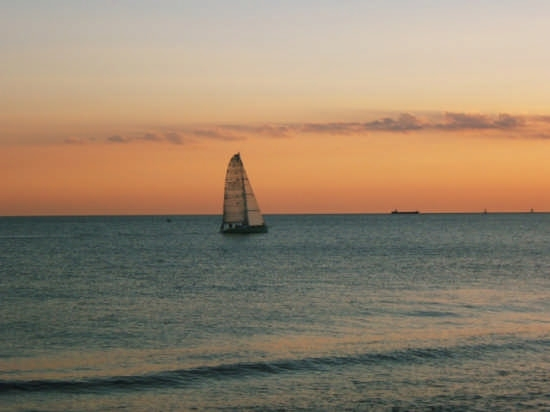 Barca a vela  - Livorno (1576 clic)