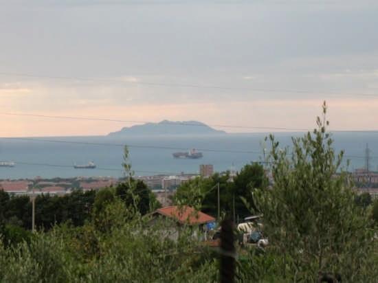 Da lontano - Livorno (1385 clic)