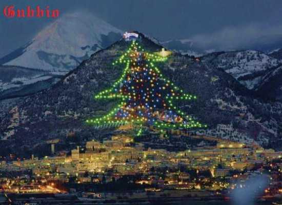 albero di Natale più grande del mondo a Gubbio  (13414 clic)