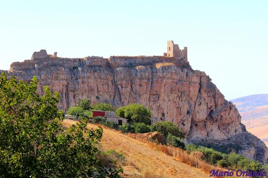 Il castello di Vicari . . . (1488 clic)