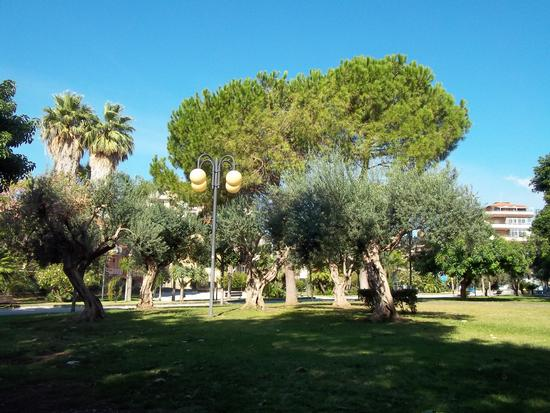 parco comunale (217 clic)