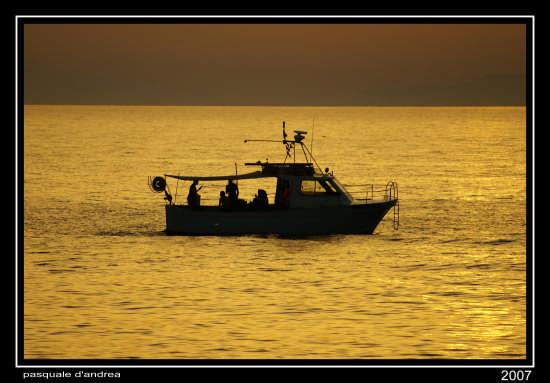 barca - Messina (3481 clic)