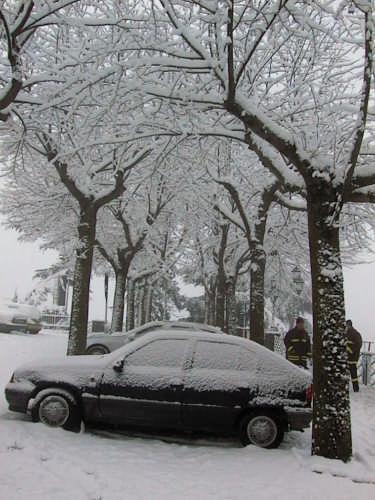 P/za Roma - Inverno 2005 - Nemi (1959 clic)