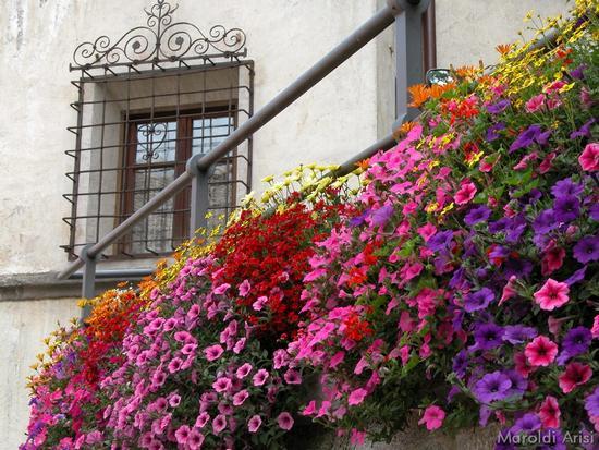 Brunico - passeggiata in centro (4385 clic)