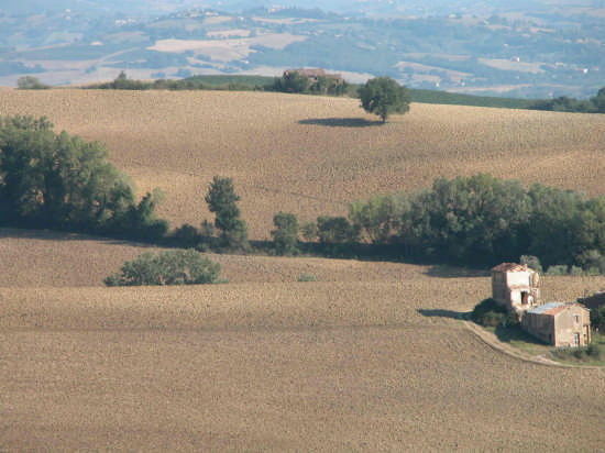 Umbria - campagna - Todi (2876 clic)