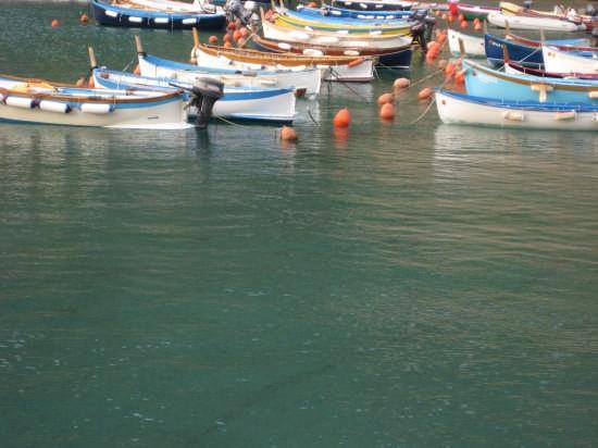 Barche in attesa - Vernazza (3113 clic)