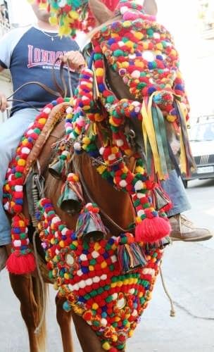 Cavallo Siciliano - Mazzarino (5505 clic)