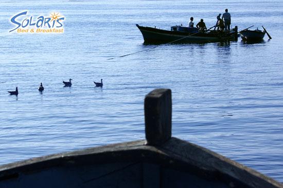 Pescatori - Milazzo (3163 clic)