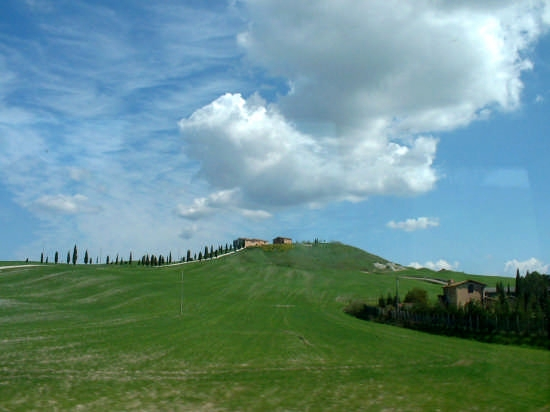 Paesaggio toscano - Trequanda (2619 clic)