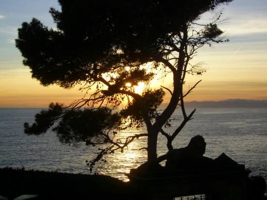 paesaggio ligure - Genova (3242 clic)