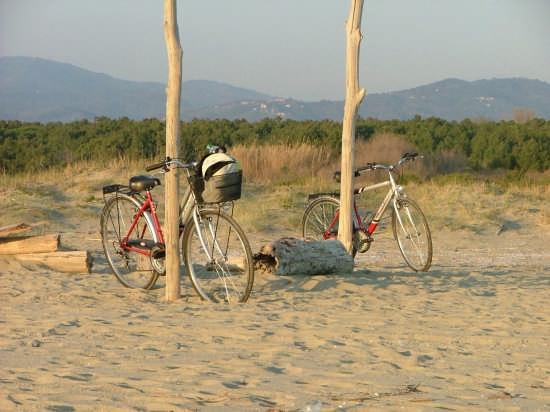 gita in bici... - Savona (2620 clic)