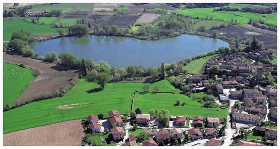 Castellaro lagusello - Monzambano (3136 clic)