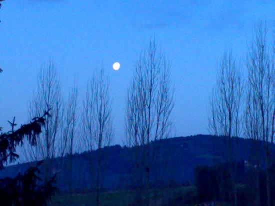luna....6.20 del mattino - Sieci (1682 clic)