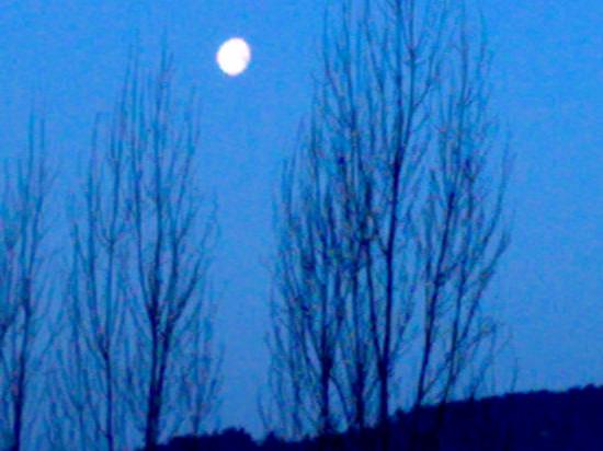 luna....6.20 del mattino - Sieci (1729 clic)