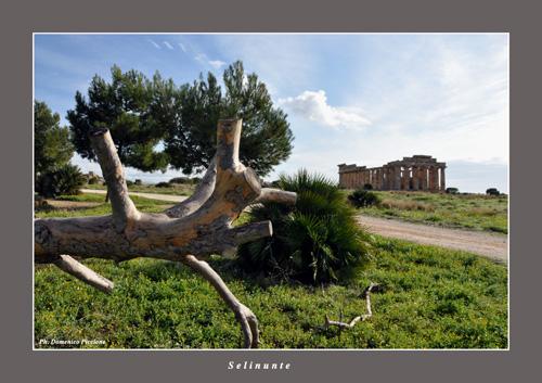 Una prospettiva diversa - Selinunte (3122 clic)