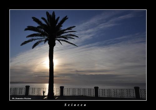 Alba su Sciacca (4104 clic)