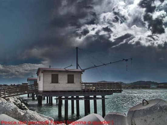 Pesca dal porto di Fano (6432 clic)