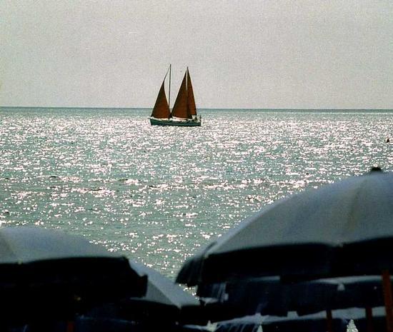 immagini di un'estate fà... - Marina di massa (1316 clic)