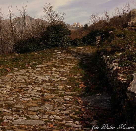 ...antica mulattiera - Alpi apuane (2390 clic)
