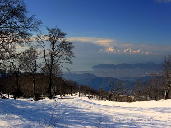 ...quanta neve a campocecina... - Alpi apuane (2596 clic)