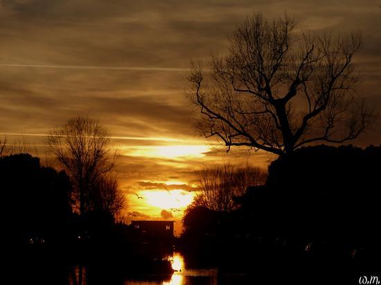 ...tramonto sul lungobrugiano - Marina di massa (834 clic)
