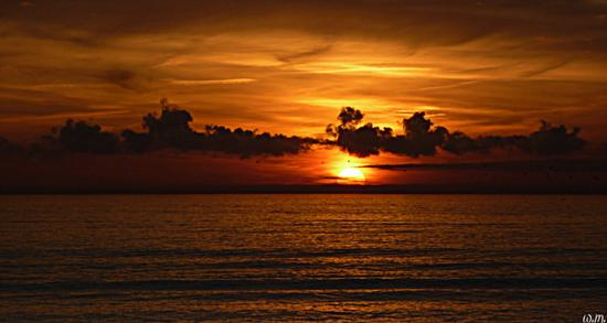 ..tramonti tropicali.... - Marina di massa (1283 clic)