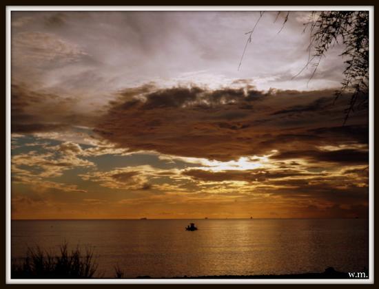 il mare calmo della sera.. - Marina di massa (1078 clic)