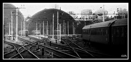 stazione centrale... - Milano (2394 clic)