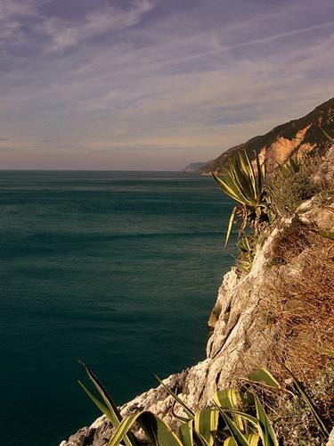 ...le scogliere di Portovenere sullo sfondo le 5 terre. (2462 clic)