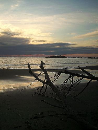 ..paesaggi invernali ..regalati dal mare.. - Marina di massa (2724 clic)