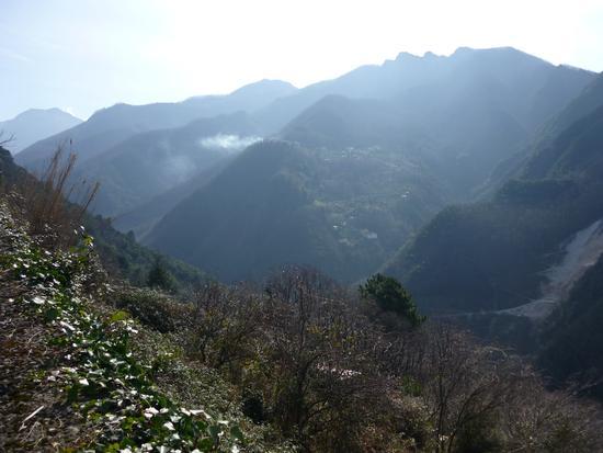 parco delle Apuane...alture di Serravezza.. - Alpi apuane (2223 clic)
