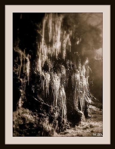 stalattiti dalla montagna... - Alpi apuane (1271 clic)
